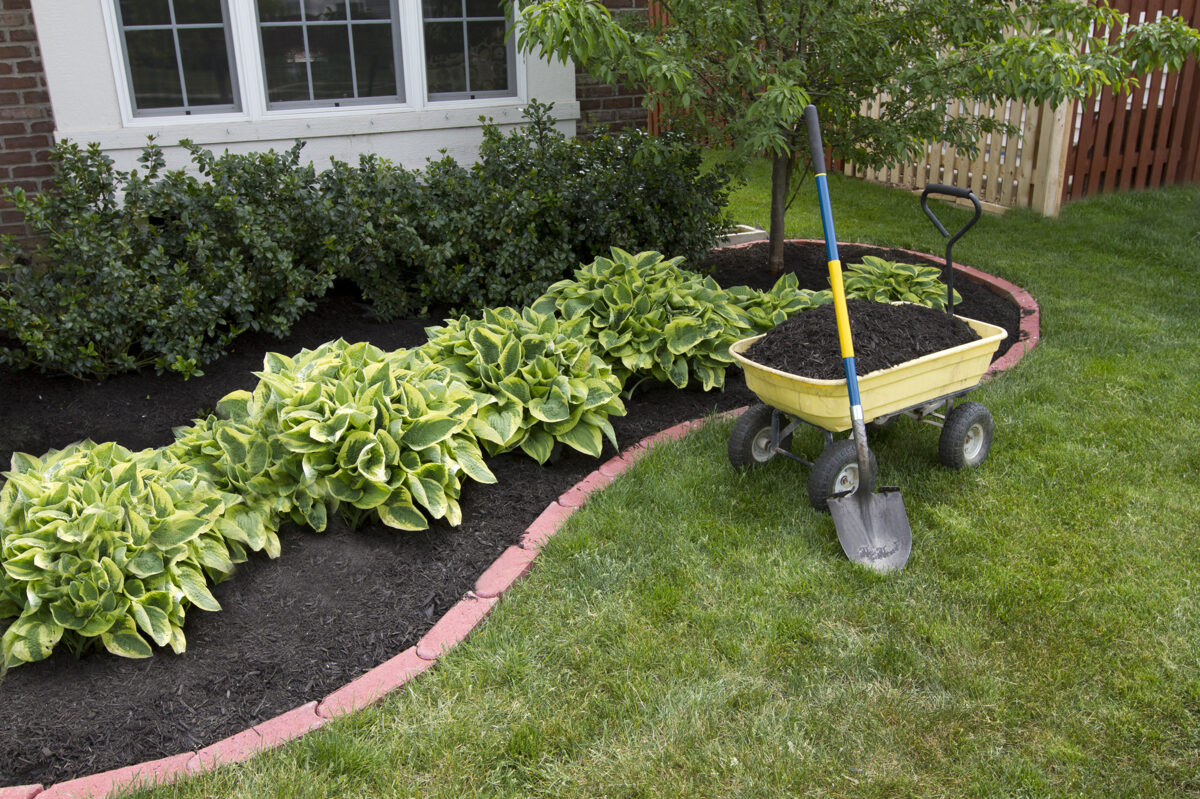 How to Choose the Best Landscaping Design Style for Your Property