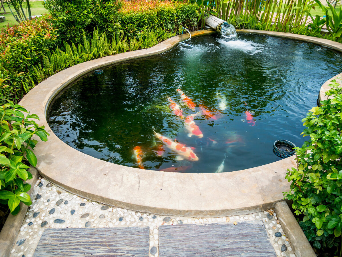 Why You Should Look Into Pond Installation