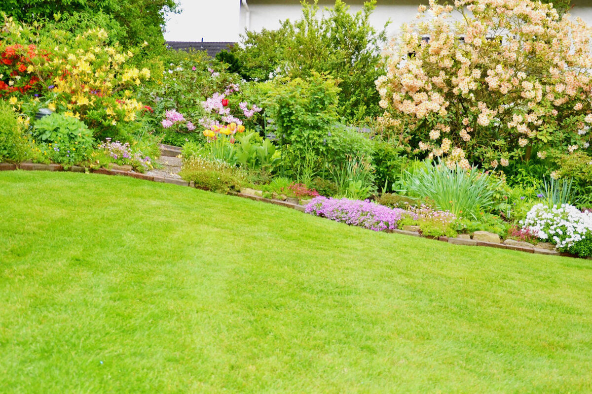 landscaping in houston