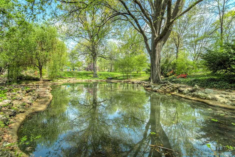 5 Reasons to Have Ponds in Your Backyard